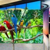 LG_Bild_OLED-TV_01